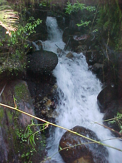 Waterfall in one of the many creeks
